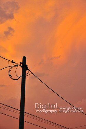 20110810_1.jpg