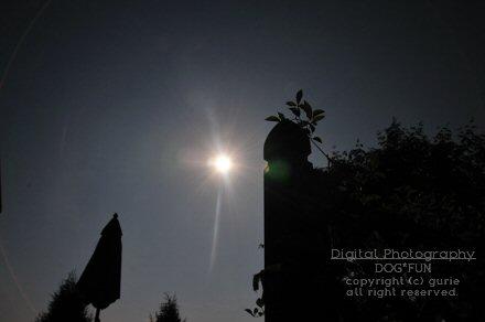 20120521_2.jpg