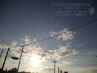 20120606_1.jpg