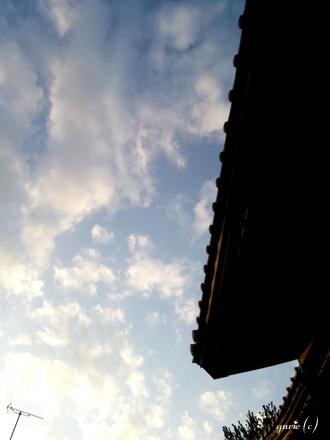 20131124_1.jpg